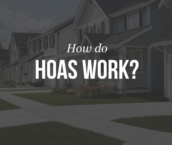 HOA Collections